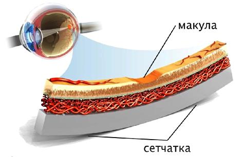Центр контактной коррекции зрения пантелеймон